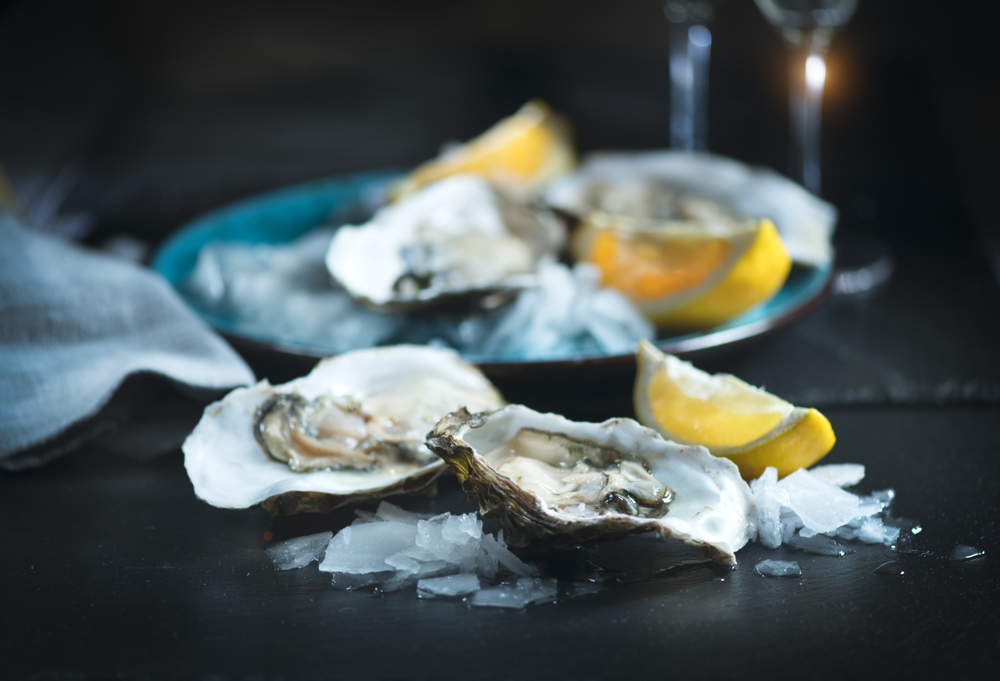 Fresh Oysters close up on blue plate served table with oysters lemon and ice