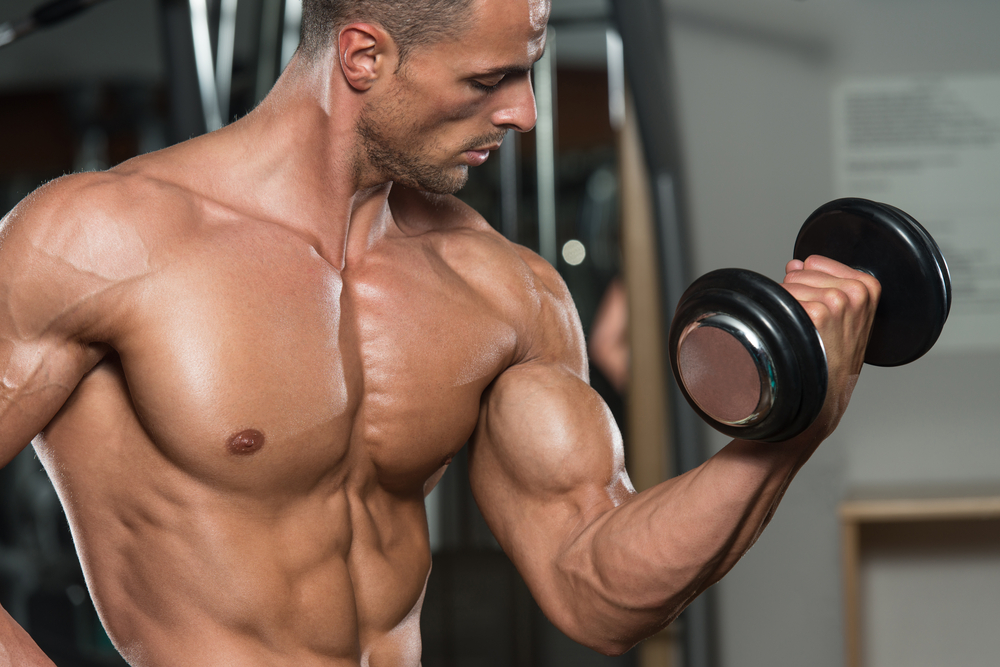 Young Man Working Out Biceps Dumbbell Concentration Curls